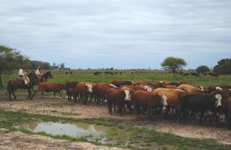 De formosa argentina para el mundo - 1 part 9