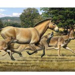 Aelurodon ferox pack pursues a three-toed horse