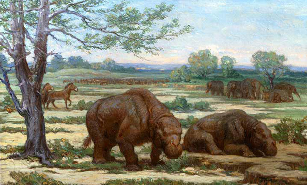 Ungulate, toxodon and proboscidean mastodon